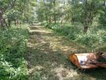 Wycinarka do darni/Zakładanie trawników