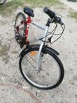 rower 24