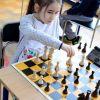 170424-szachy-043